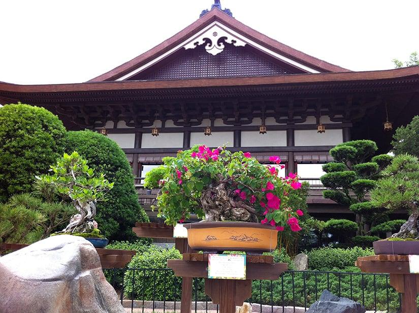 Tokyo_4918