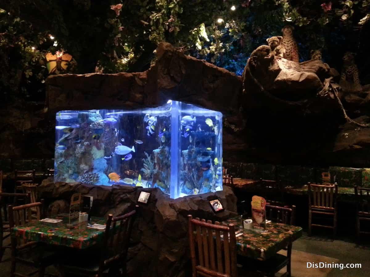 Rainforest Cafe Downtown Disney Email Address