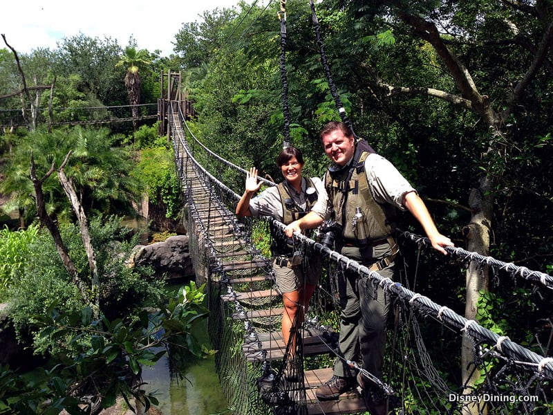 Wild African Safari Bridge