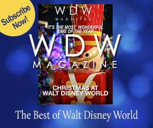 wdw-magazine-issue3-300X250