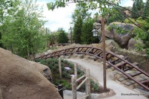 7 dwarfs mine ride, new fantasyland, magic kingdom,walt disney world,  16