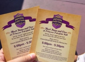 Anna and Elsa Tickets