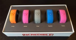 Magic Bands Picture