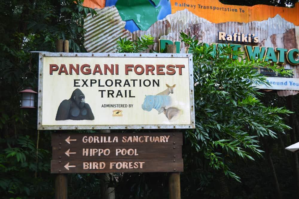 animal kingdom pangani forest trail