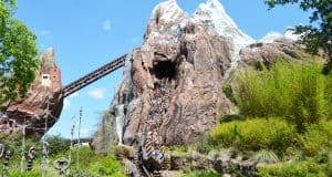 Animal Kingdom Expedition Everest Train Coming Down 2