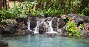 Polynesian Resort Fountain 2 fb crop