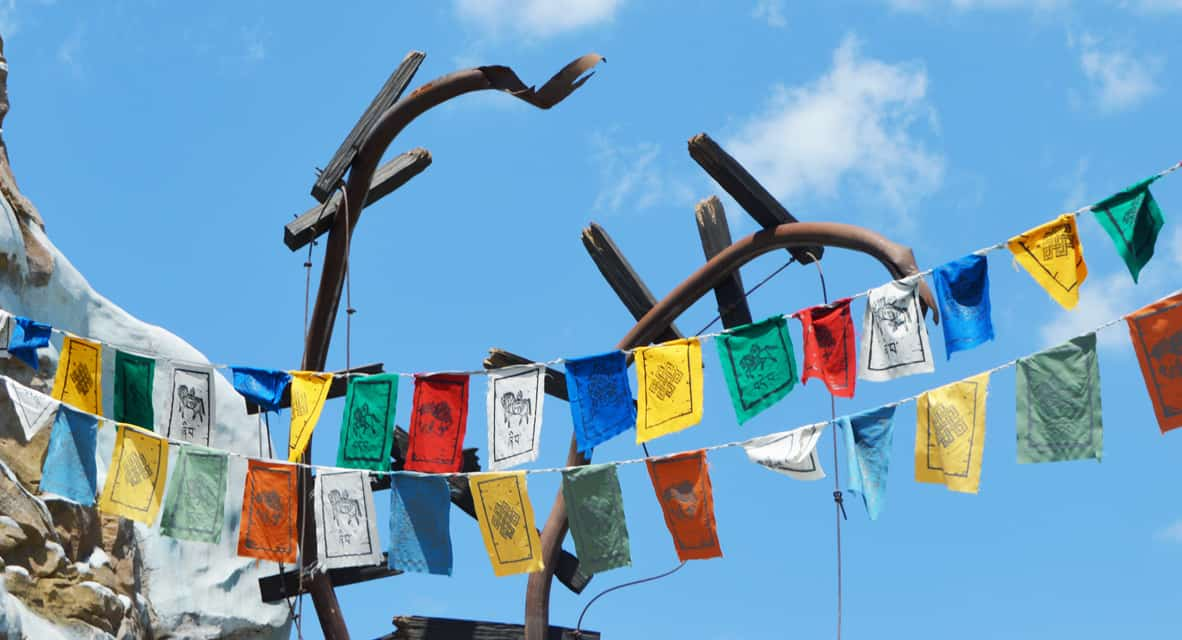 Animal Kingdom Expedition Everest Train End of Tracks Flags fb crop