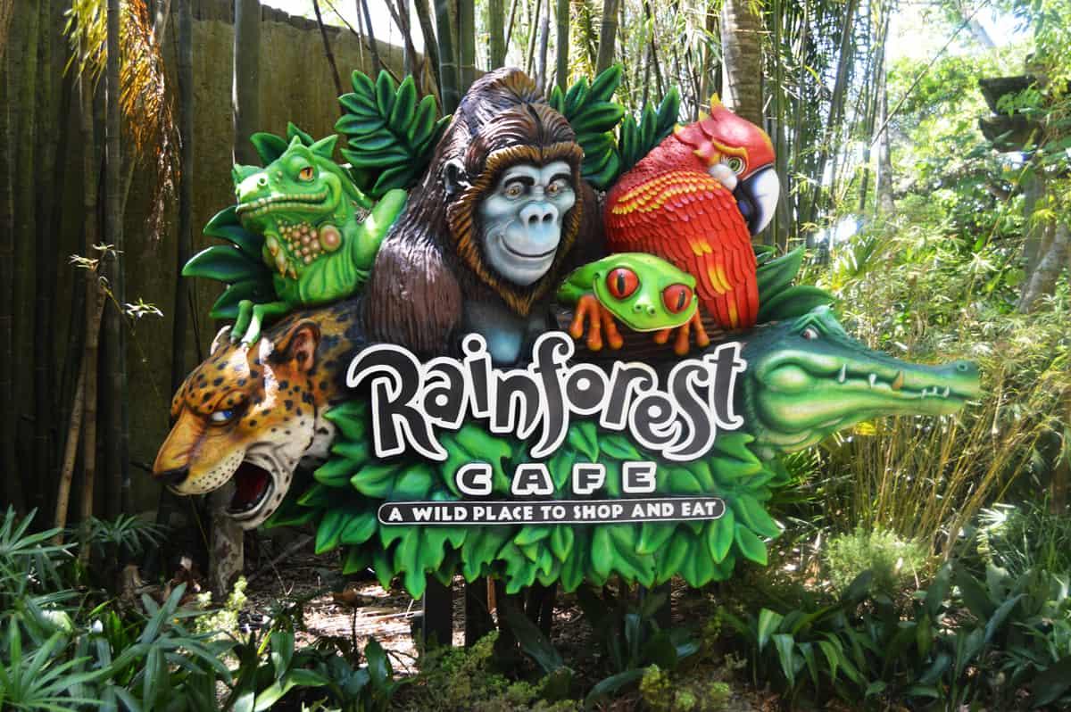 Disney World Rainforest Cafe Reviews
