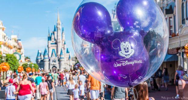 20 Interesting Facts About Walt Disney World
