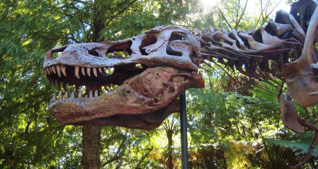 totally cool things about dinosaur disneydining