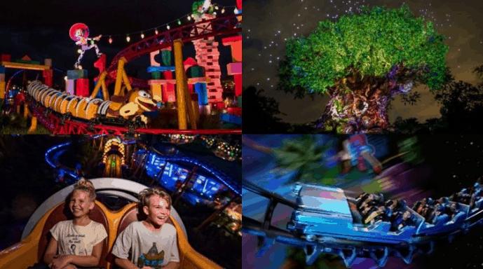 Walt Disney World Expands Disney After Hours to Hollywood Studios and Animal Kingdom - Disney Dining Information